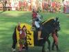 Ritterspiele mit unserem Favoriten Mike alias Ritter Eberhard von Würtenberg (gelb)